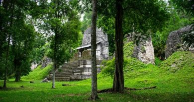 BBC - Travel - In Guatemala, the Maya world untouched for centuries