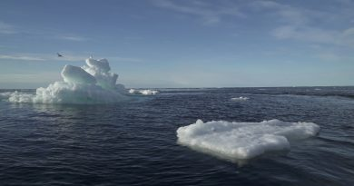 Arctic sea ice at record low October levels: Danish researchers | Europe