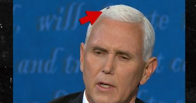Pence, Harris Dodge Debate Questions, but Housefly Steals the Show