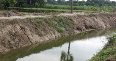 BMDA to re-excavate 715 more ponds in Rajshahi region