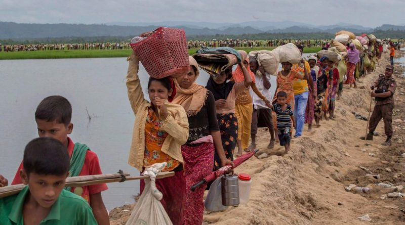 The Gambia submits case against Myanmar for Rohingya genocide – National – observerbd.com