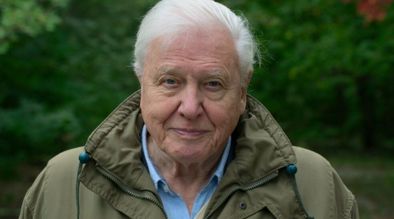 'David Attenborough: A Life on Our Planet' Review: Ruin and Regrowth