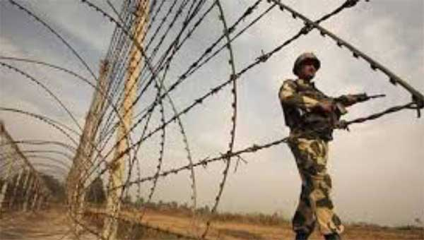 Bangladeshi detained by BSF  – Countryside – observerbd.com