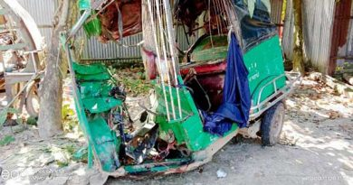 2 die as truck rams auto-rickshaw in Netrakona  – Countryside – observerbd.com