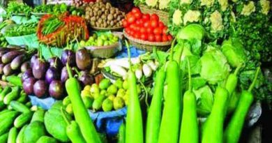 2,29,609 tonnes vegetables production likely in Narsingdi