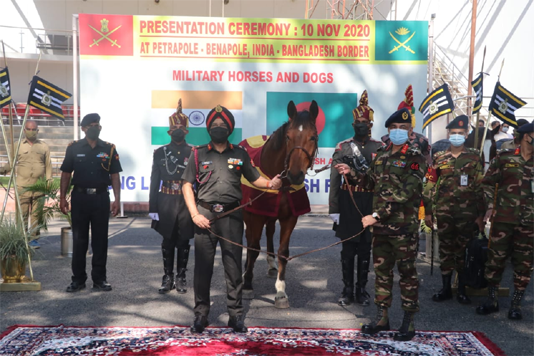 Indian provides 20 horses, 10 mine detection dogs to Bangladesh army