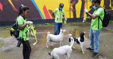No relocation of stray dogs for now: Attorney general – National – observerbd.com