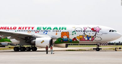 EVA Air launches speed dating 'flight to nowhere'
