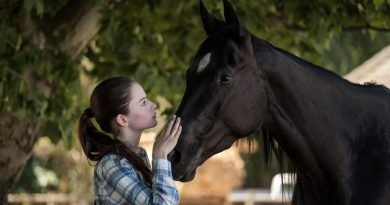 'Black Beauty' Review: A Melodrama in Need of Rougher Edges