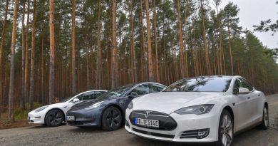 Tesla progress on German factory slowed by sleeping snakes