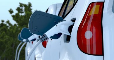 Auto industry wants more government support for electric vehicles