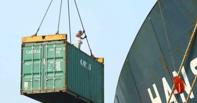 Exports back to positive trend in November