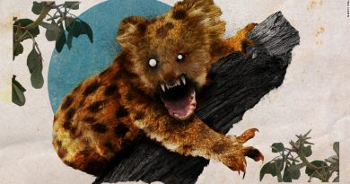 How Australia's drop bear came to be its most deadly -- and most fake -- predator