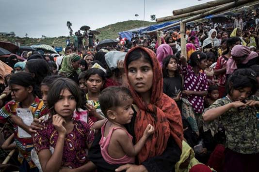 National committee formed to coordinate 'Rohingya' activities