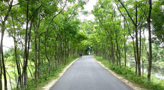 1,696.66-km roads to be constructed in Rajshahi division