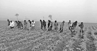Farmers of Joypurhat weave dream of future in potatoes | The Asian Age Online, Bangladesh