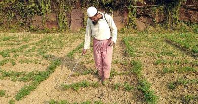Bumper potato production likely in Rangpur region | The Asian Age Online, Bangladesh