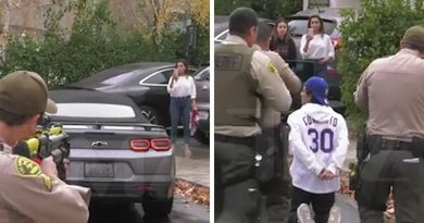 Woman Goes Off On Cops As Son Is Arrested In Wild Confrontation