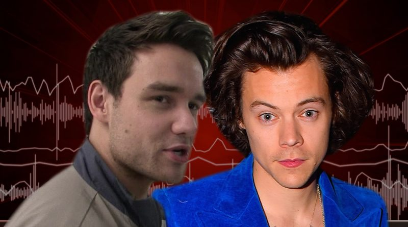 Liam Payne Says Harry Styles Looked Great in a Dress for Vogue Photoshoot