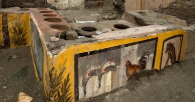 Fast-food eatery discovered at Pompeii helps reveal favourite dishes of ancient Roman citizens