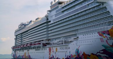 Singapore Allows Cruises. Yes, There are Limits.