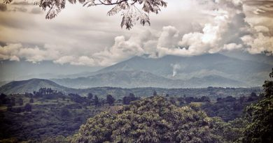 BBC - Travel - Rwenzori Mountains: Africa's surreal 'Mountains of the Moon'