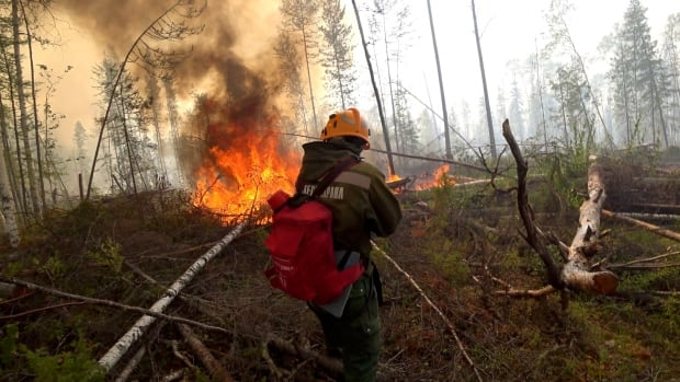 New report finds vast Siberian wildfires linked to Arctic warming