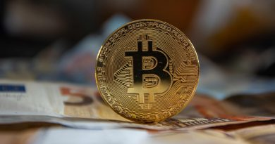 Bitcoin price falls as record-breaking rally loses steam