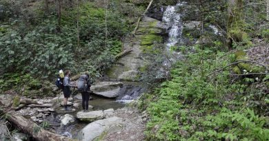 The Appalachian Trail Conservancy recommends that hikers leave long expeditions for 2022 due to Covid-19