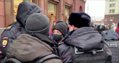 Alexei Navalny's wife among hundreds detained at anti-Kremlin protests