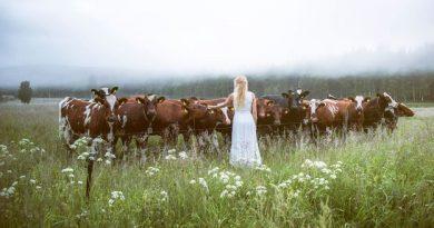 BBC - Travel - 'Kulning': A hypnotic Swedish singing tradition